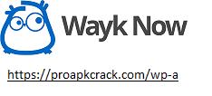 Wayk Now 2021.1.2.0 Crack